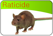 bloc-base-raticide.png